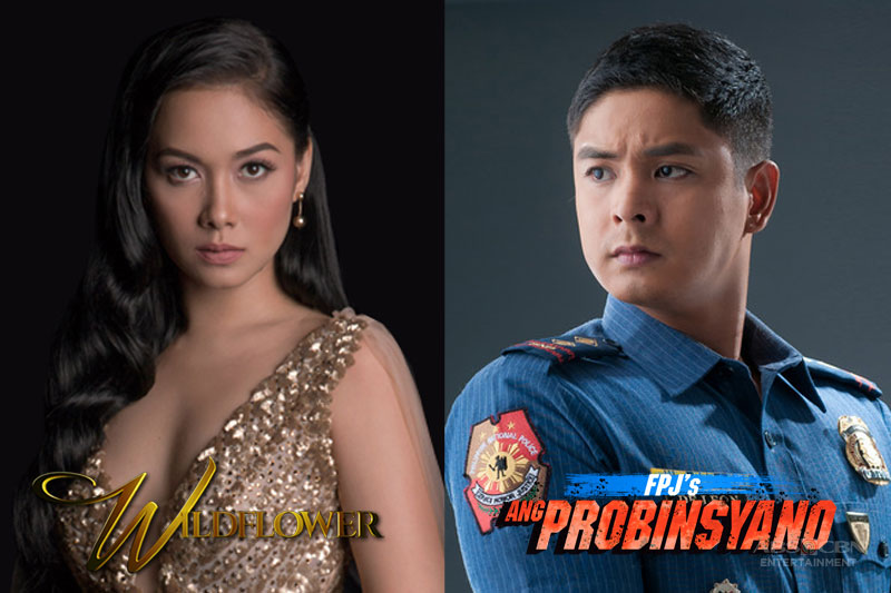 Netizens pick Ivy Aguas as Cardo s dream ally on FPJ s Ang Probinsyano in fun Kapamilya Poll 1